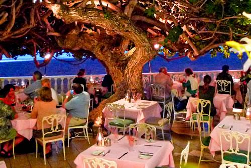 ハワイ エッグベネディクト tree1