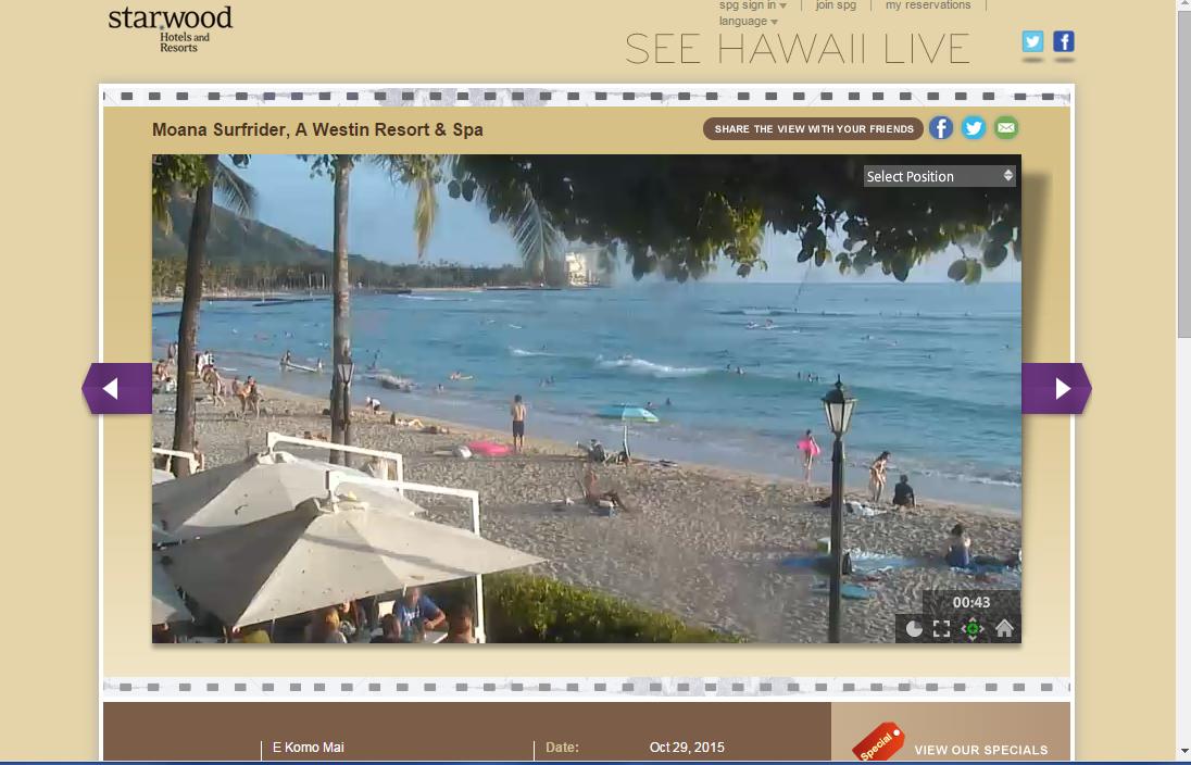 SEE HAWAII LIVE