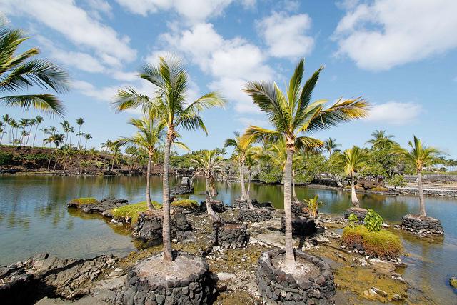 マウナ ラニ ベイ ホテル(Mauna Lani Bay Hotel) 景色