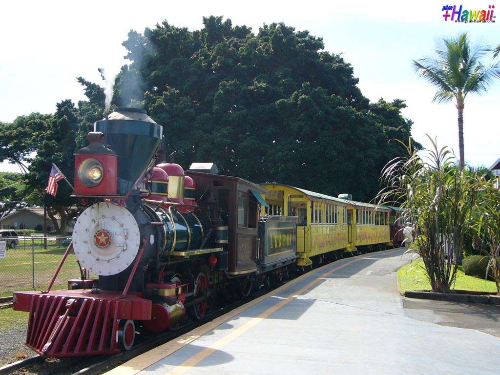さとうきび列車1