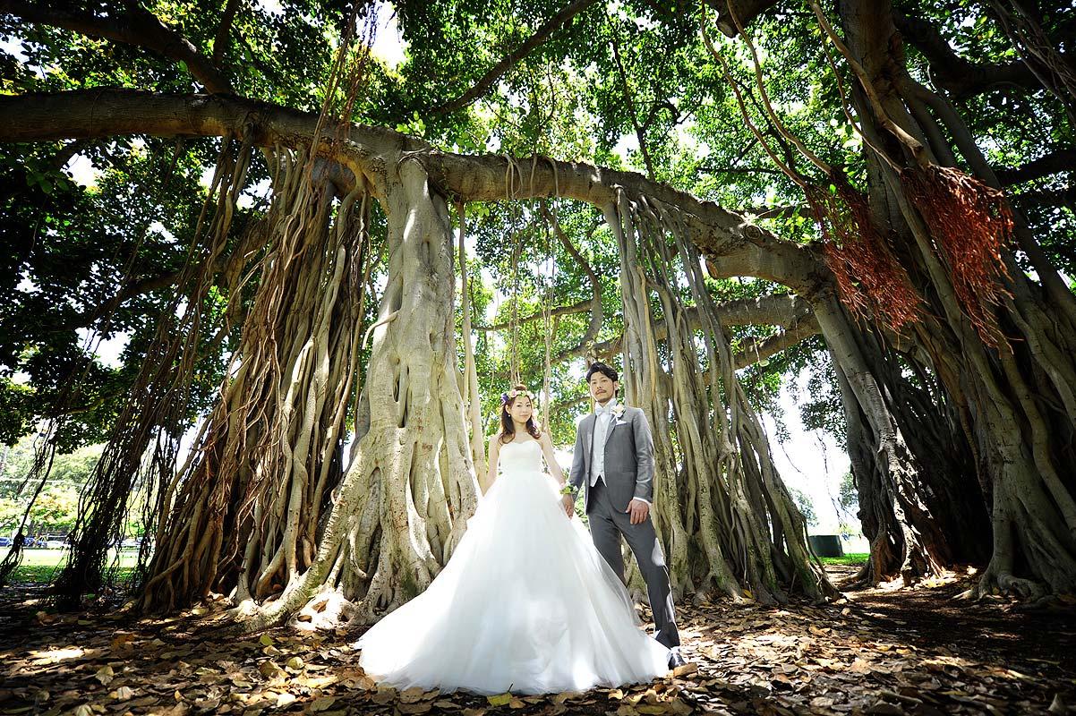 木の中で撮影