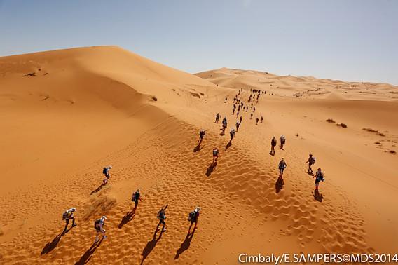 サハラ砂漠ラン