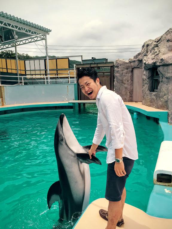 イルカと僕