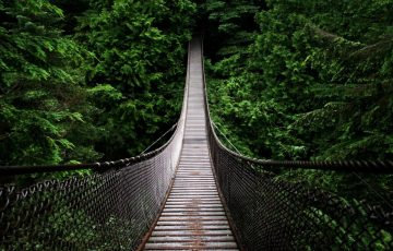 Capilano-Suspension-Bridge.-Canada
