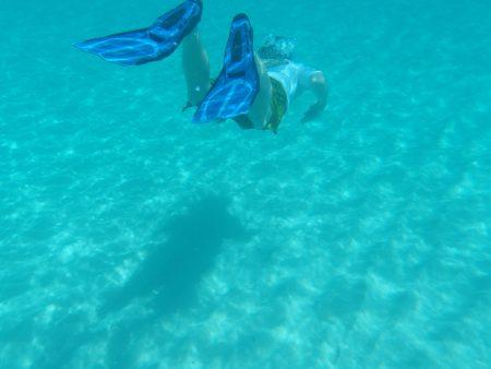 フィンを付けて泳ぐ
