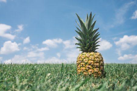 ハワイ 免税 物価