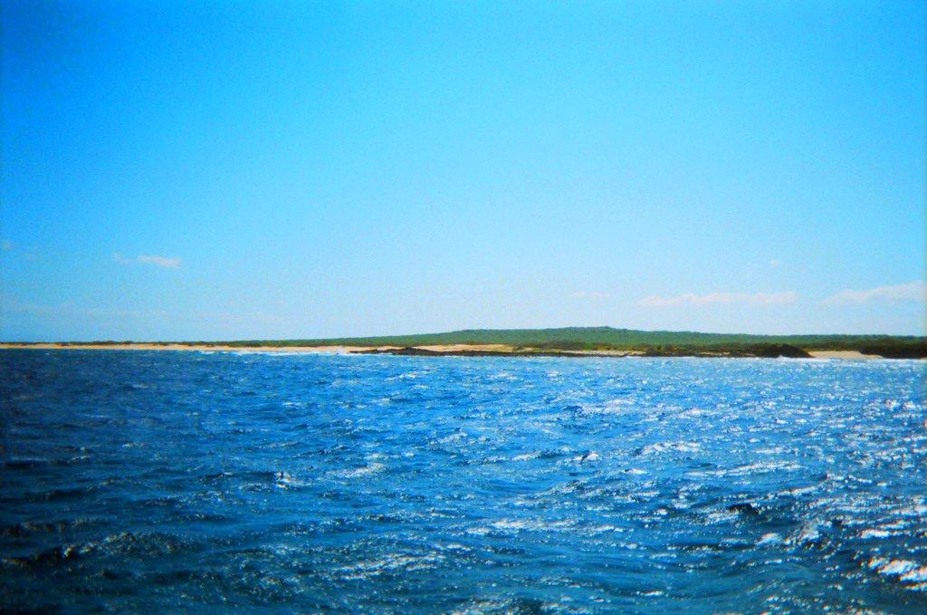 ニイハウ島の海
