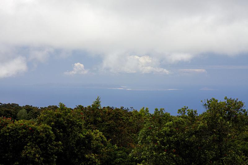 ニイハウ島