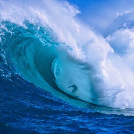 ハワイ 芸能人ブログ