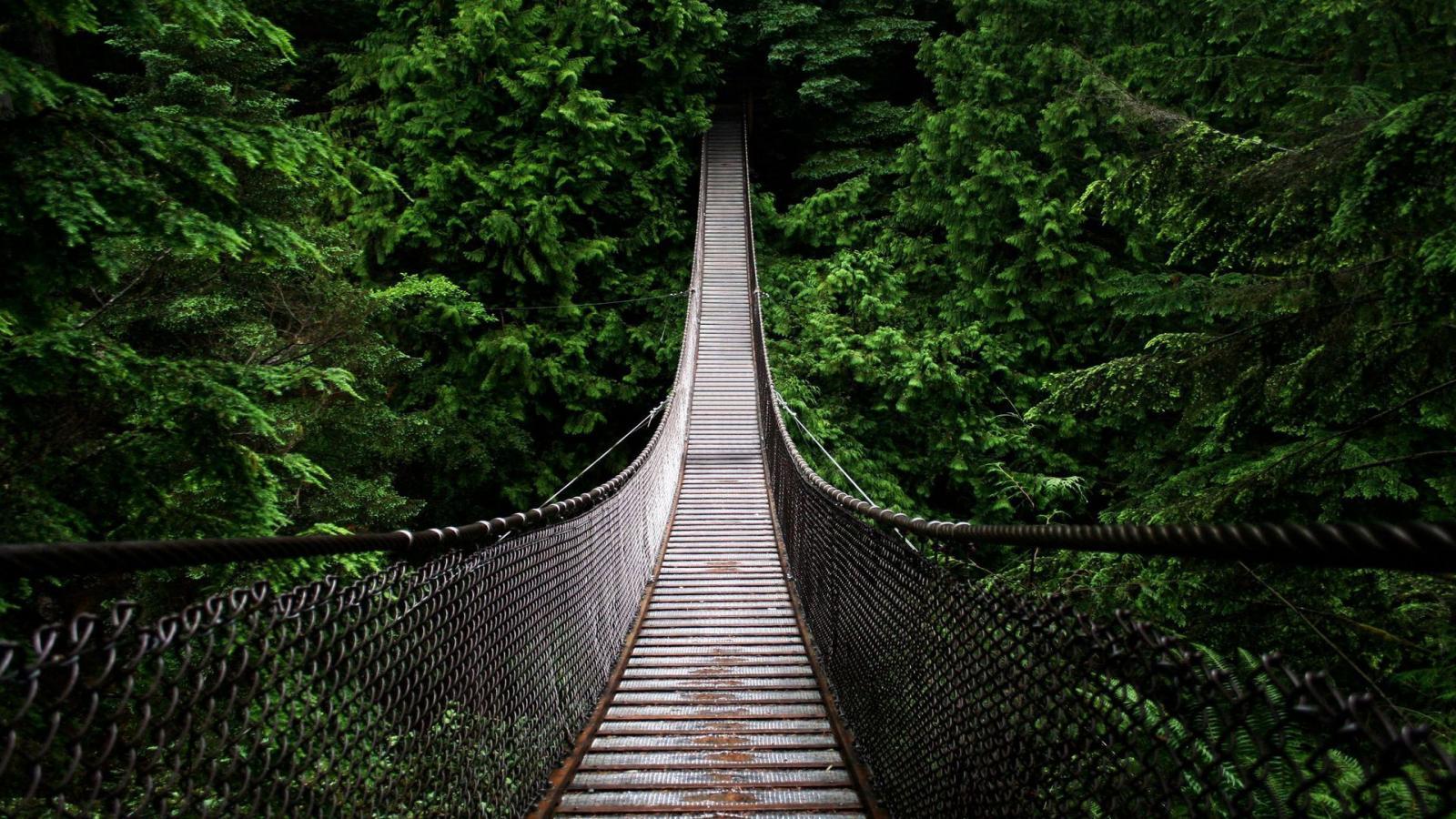 Capilano-Suspension-Bridge.-Canada