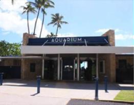 ハワイ ワイキキ水族館 営業時間