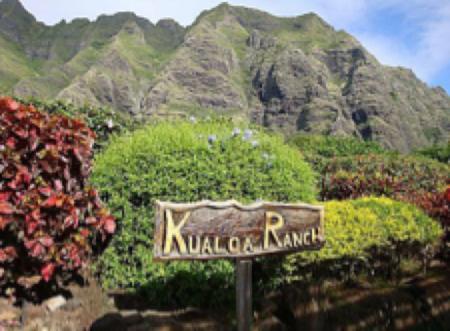 ハワイ オアフ島 アクティビティ クアロアランチ