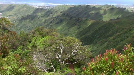ハワイ クリオウオウ・リッジ・トレイル