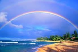 ハワイ ハネムーン 季節
