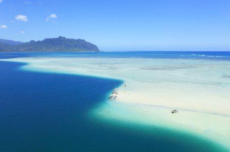 ハワイ カネオヘ湾サンドバー ダイビング