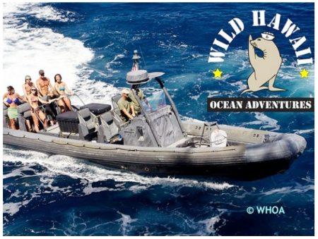 ハワイ シュノーケリング 海軍ボート貸切 シュノーケリングツアー