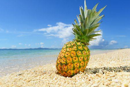 ハワイ ジュエリー パナップル