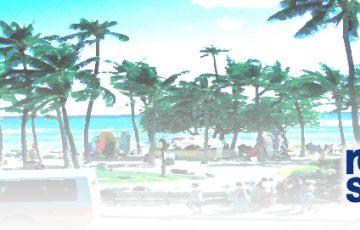 ハワイ 人気ブランド レインスプナー