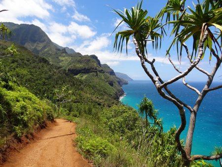 ハワイ オーガニックコスメ 高いプロダクト