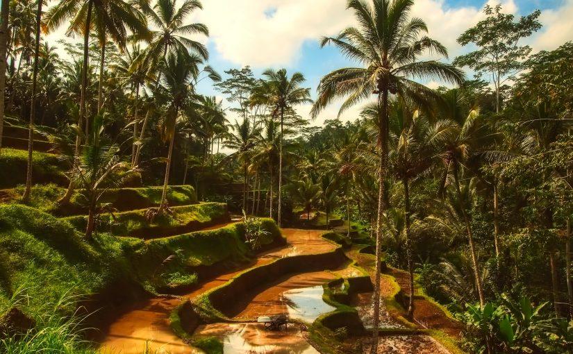 バリ島 ツアー 定番スポット