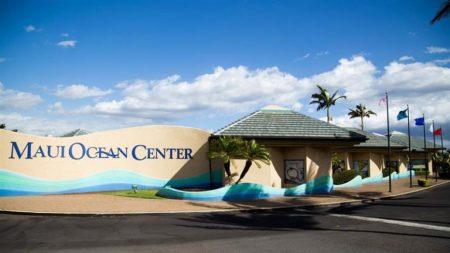 ハワイ マウイオーシャンセンター 見どころ