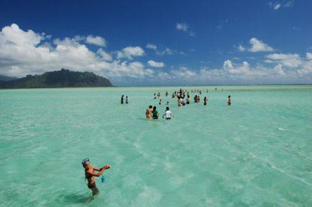 ハワイ アクティビティ キャプテンブルース天国の海ツアーキャプテンブルース天国の海ツアー