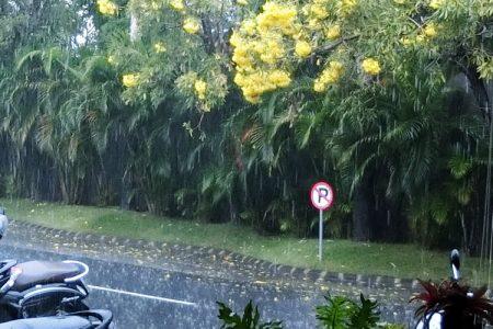 バリ島 雨季 楽しみ方
