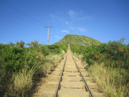 ハワイ 隠れ名所 ココヘッドクレータートレイル