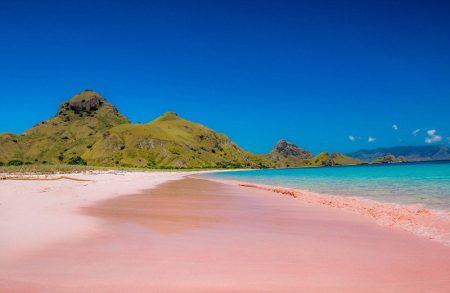バハマ ピンクサンドビーチ