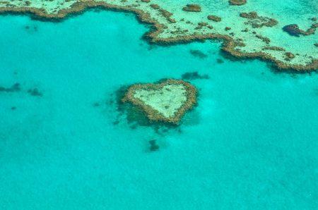 ニューカレドニア 治安 珊瑚に注意