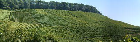 シチリア ワイン 列車風景