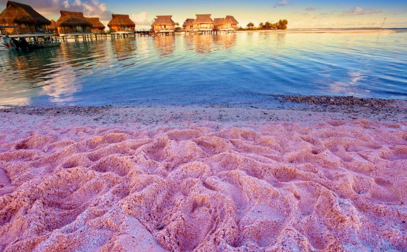 バハマ ピンクサンドビーチ スポット