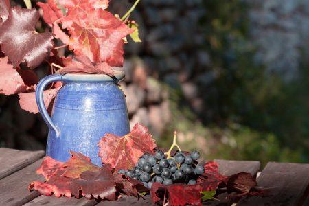 カンヌ お土産 ワイン