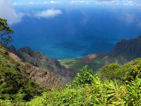 ハワイのクアロア牧場ツアー
