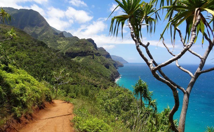 カウアイ島の道
