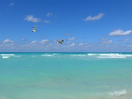 バハマ プライベートビーチ